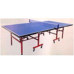 NINJA Single Folding Table Tennis Table N-201