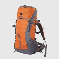 Original Wildcraft Backpack
