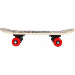 Kids 5 inch x 17 inch Skateboard (Multicolor, Pack of 1)