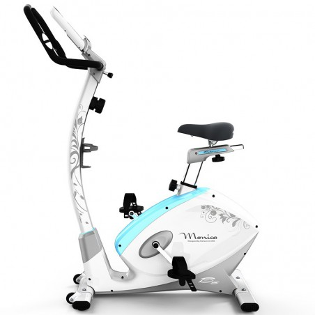 HARISON B5 Stationary Upright Exercise Bike with Magnetic Resistance for Indoor Home Gym Cardio Workout