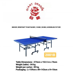 TABLE TENNIS GIANT DRAGON 2001B